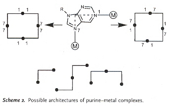 Synthetic Purine-metal Architectures