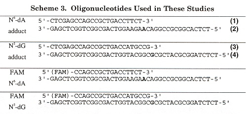 PAH A and G Adduct Oligonucleotides